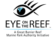 eye on the reef with no limit adventures